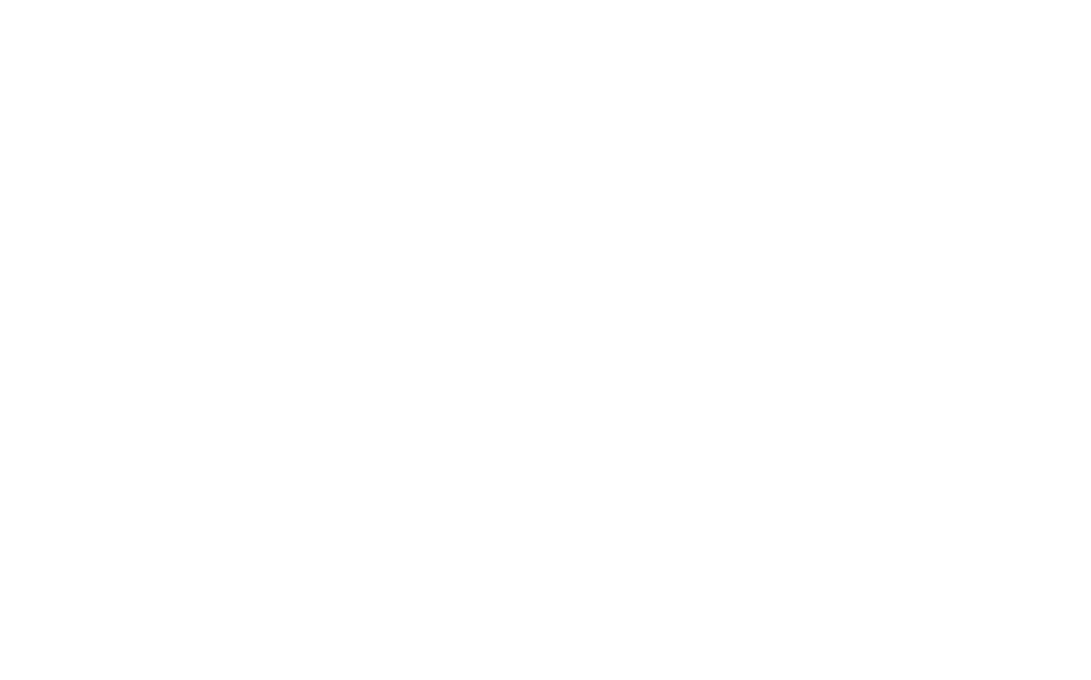 Bulldog 100 10th Anniversary logo