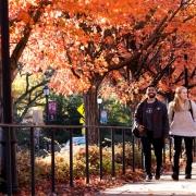 UGA Campus in Fall