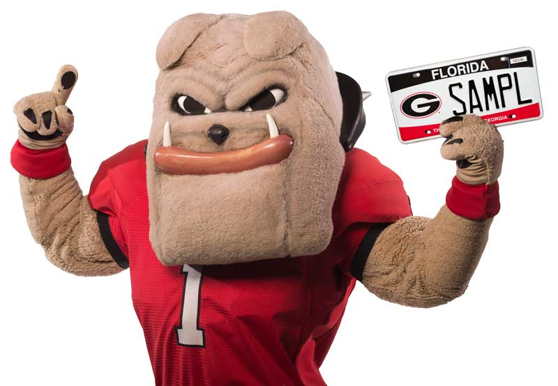 Hairy Dawg with Florida License Plate