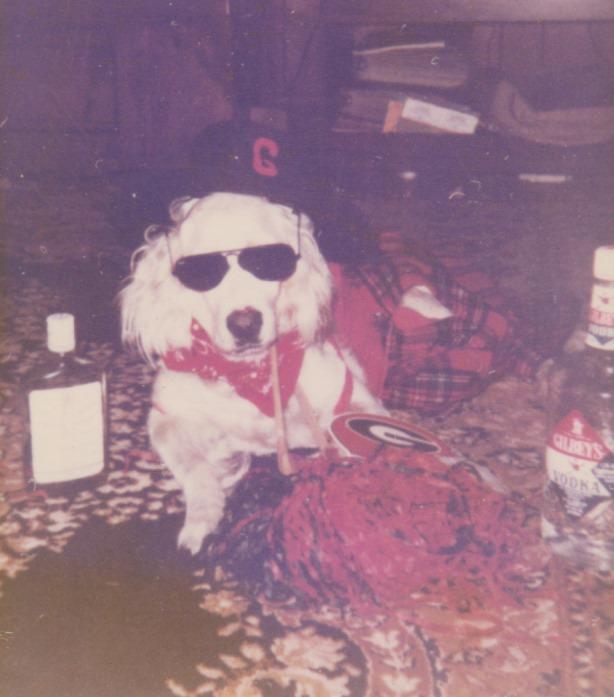 Grace Stewart's Dog