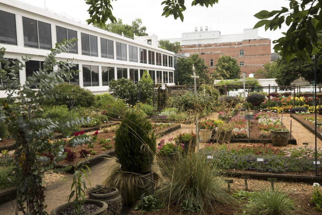 UGA Horticultural Trial Gardens